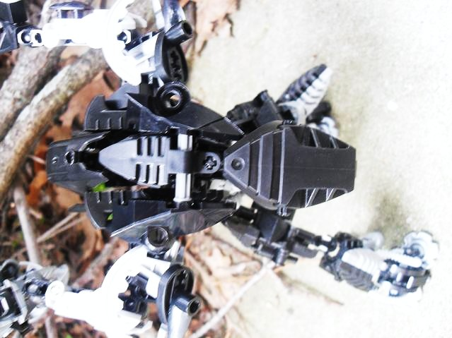 toa_dark_hunter_152.jpg