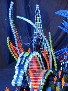 anemone-04.jpg