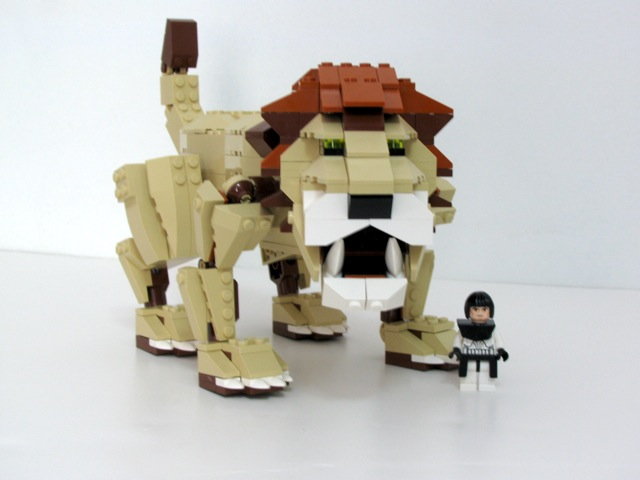 lion_front.jpg