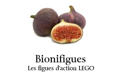[Fans-Arts] Les Memes Bionifigs - Page 4 Bionifigues