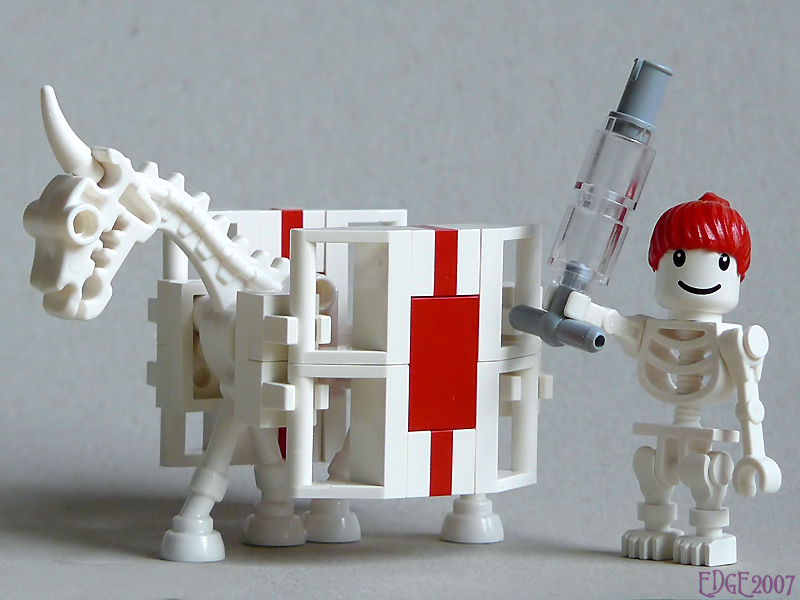skeleton_horse_nurse_01.jpg