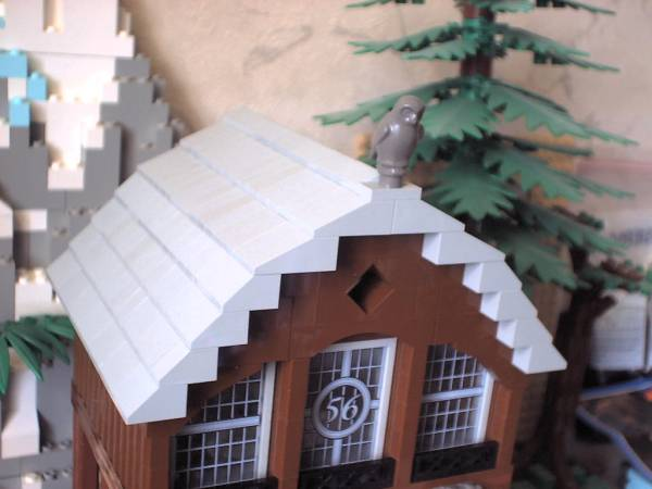 Haus 66 Dach