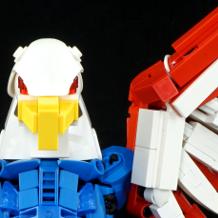 00_america_bird.jpg