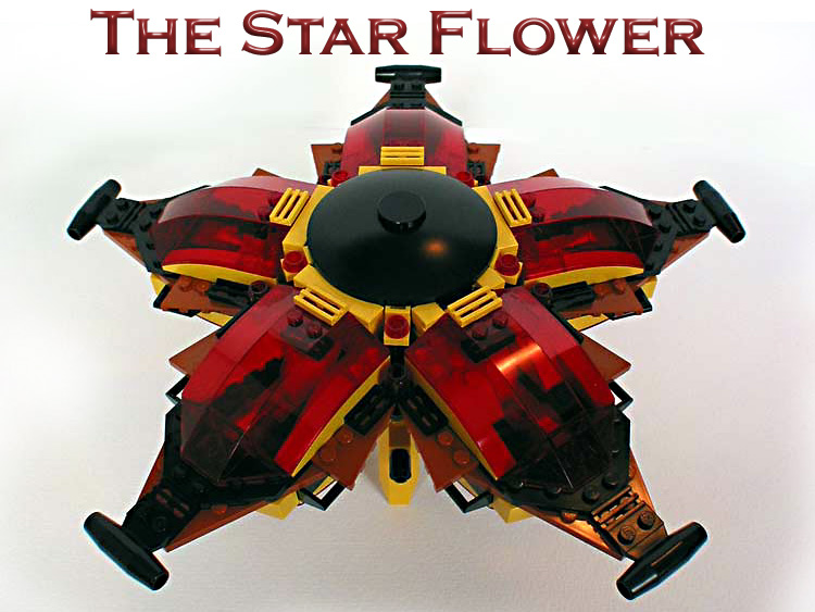 00-the-star-flower-splash.jpg