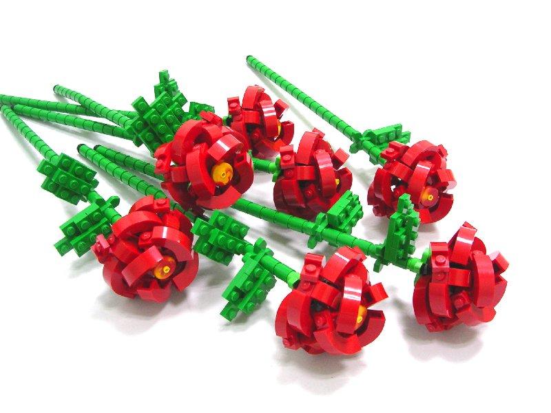 Rose Cluster Moc Pockyland