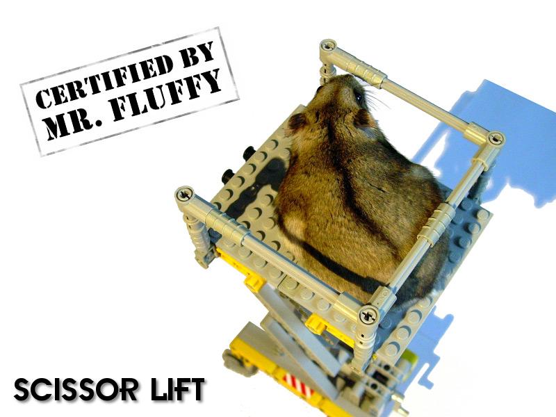 Sariel pl » Scissor Lift