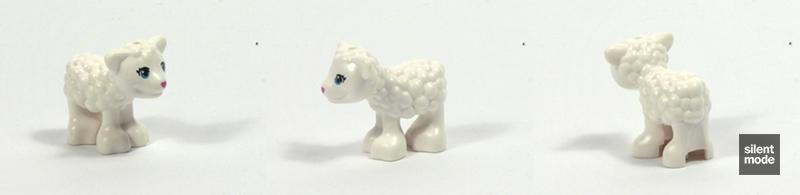 Photo of Stephanie's New Born Lamb