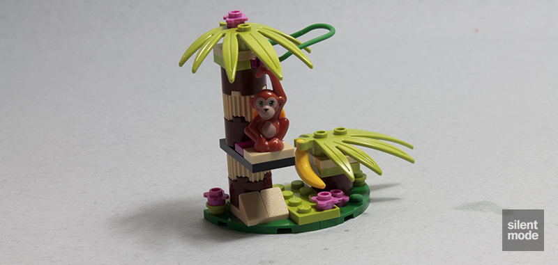 Photo of Orangutan's Banana Tree