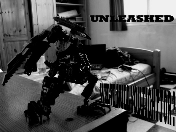 unleashed_montage.jpg