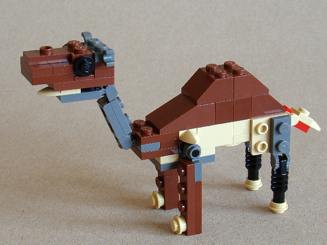 4916-4-1-camel.jpg