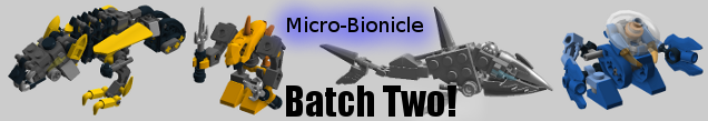 micro2bnr.png
