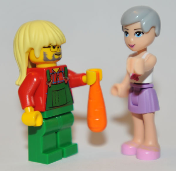friends_and_minifig.jpg