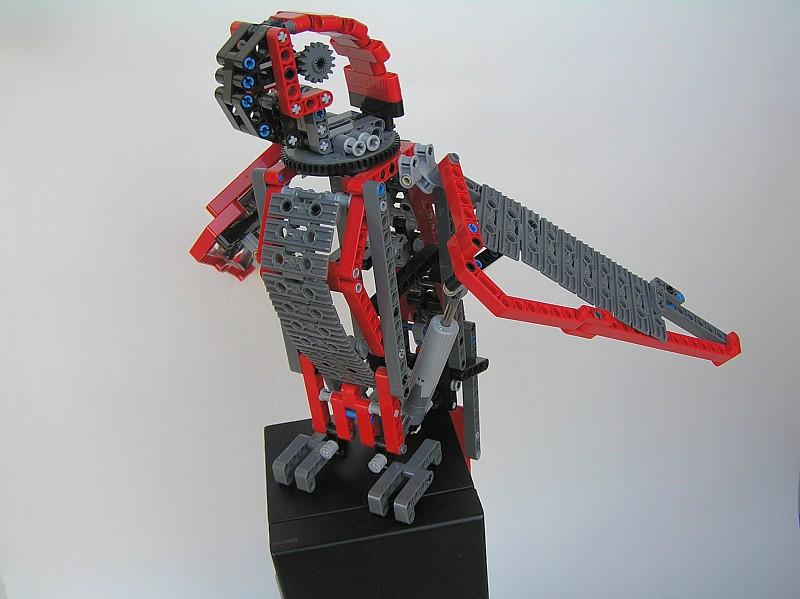 parrot06.jpg