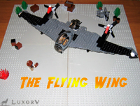 flyingwing_000.jpg