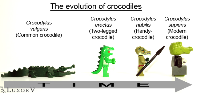 evolutionofcrocodiles_001.jpg