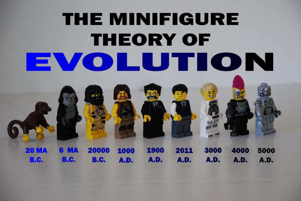 evolution_b.jpg