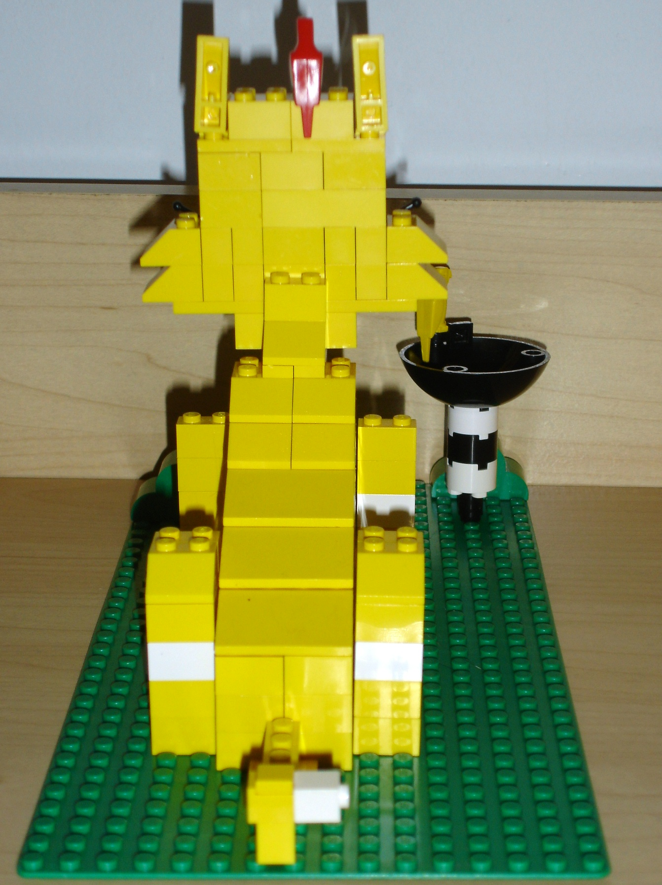 yellow_cat_rear.jpg
