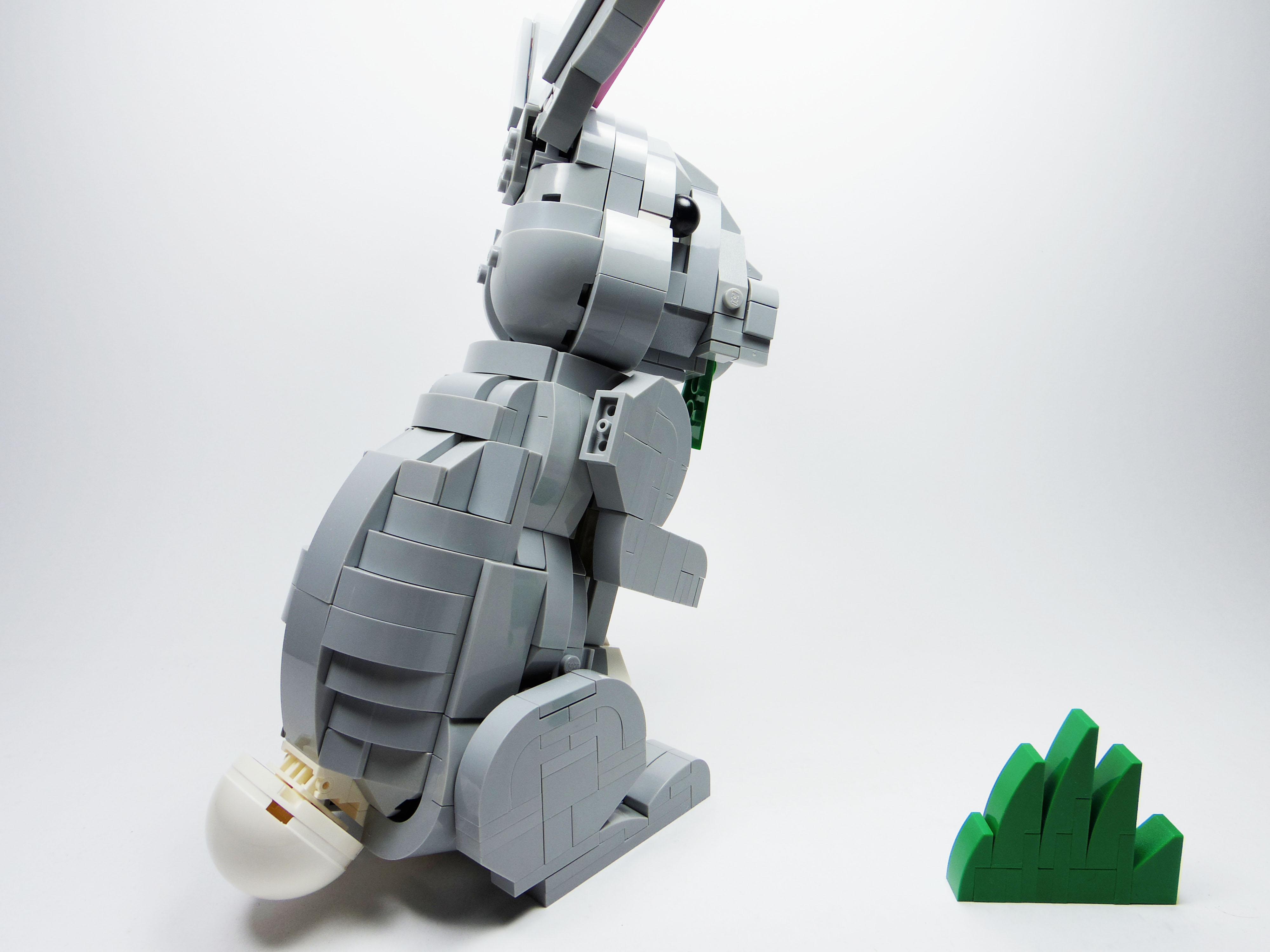 [查米]公園小動物-兔子